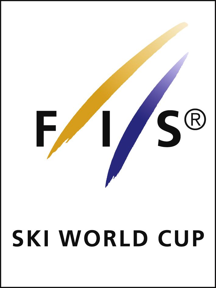 Update on FIS